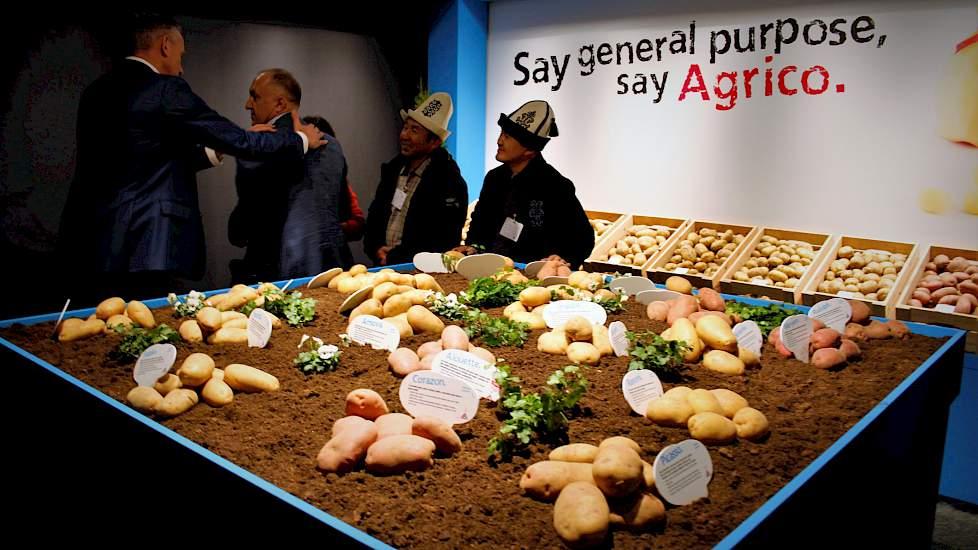 """Na tal van andere landen in de afgelopen jaren stond de Agrico-locatie in Bant dit jaar geheel in het teken Oekraïne. Agrico-directeur Jan van Hoogen: """"De aardappel is hier het belangrijkste AGF-gewas. Wat productie betreft staat Oekraïne op de vijfde pl"""