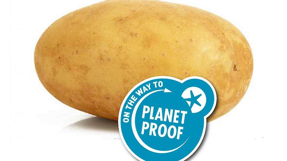 aardappel planedrezista 01 1030x802. detalo