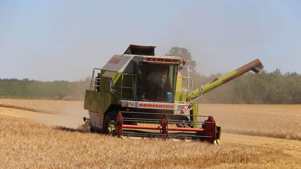 Met gemiddeld 6,1 ton realiseert Nederland de hoogste opbrengst zomergerst van de EU.