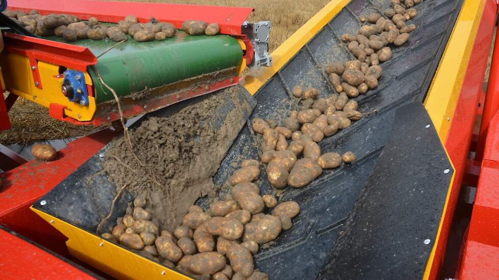 aardappelen op transportband, laden vrachtwagen