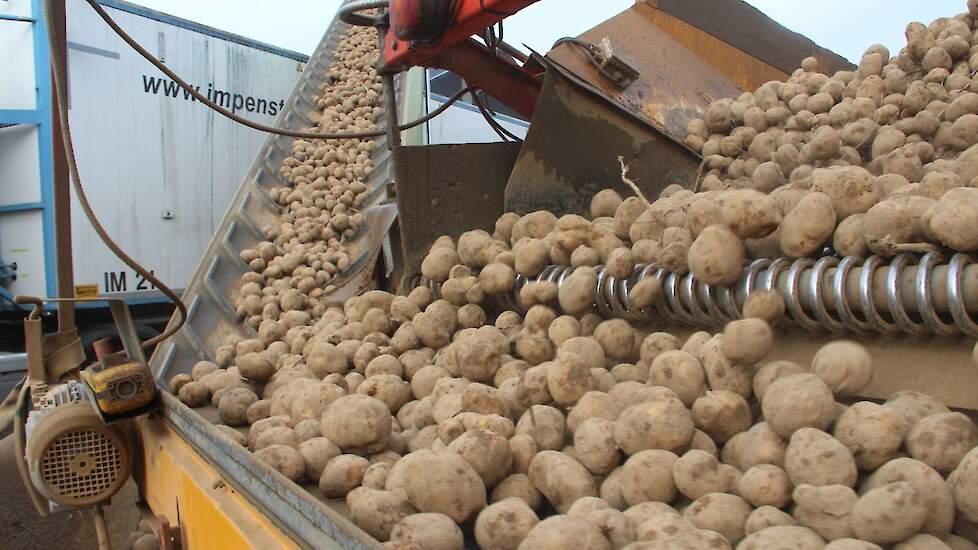 Картоптың келісім-шарт бағалары